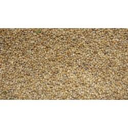 Millets (2)